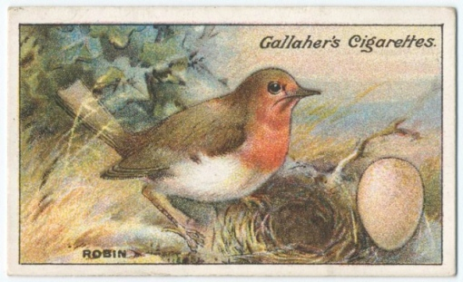 Robin (and egg) cigarette card